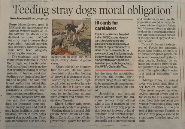 Feeding stray dogs moral obligation