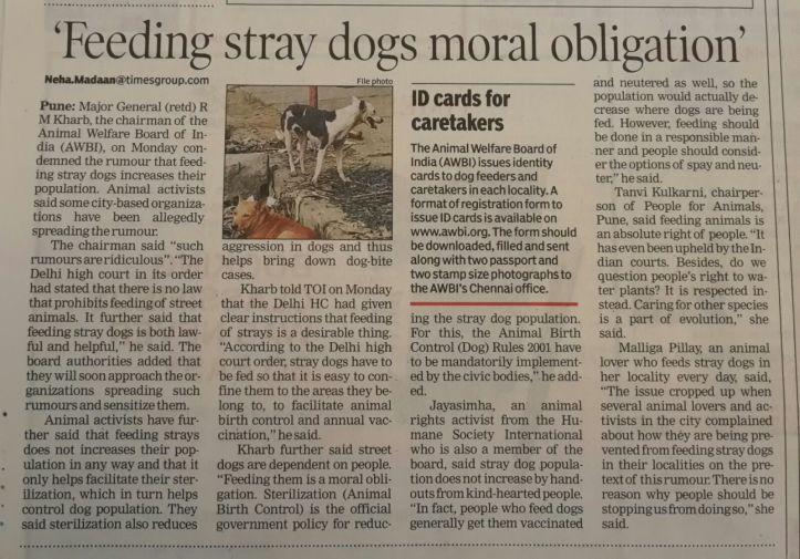 Feeding stray dogs moral obligation