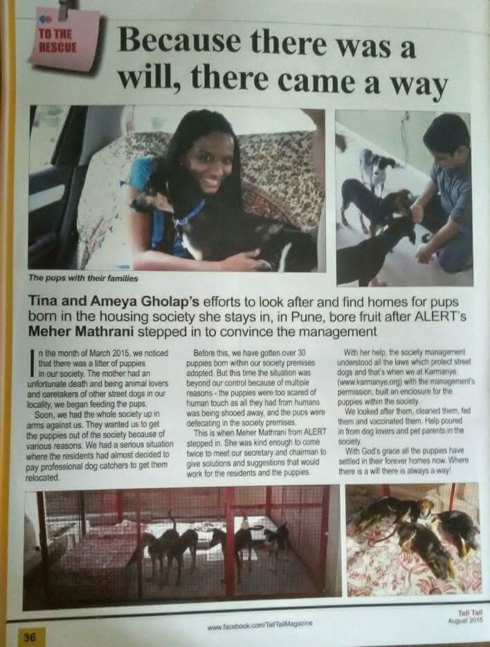 Tell Tail Magazine, Pune, Aug 2015 issue